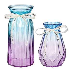XILEI Glass Vases for Flowers,Blue and Purple Vases Set of 2 ,Flower Vase Decorative for Home Decor, Desk Placement and Gift (D3)