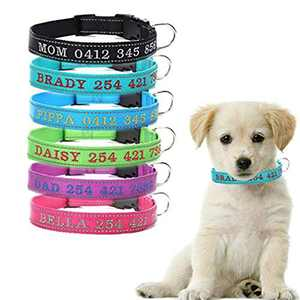 ZTZ Custom Laser Engraved Collar Personalized Dog Collar for Medium Dogs, with Special Text for Dogs(XS, S, M, L, XL) (6 Color)