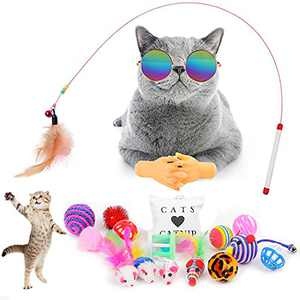 TOYSBOOM 19 PCS Cat Toys Pack - Interactive Kitten Toys Including Catnip Toy, Cat Wand, Cool Cat Sunglasses, Tiny Hands, Crinkle Balls, Cat Feather Toys and Cat Mice for Indoor Cats, Kitty