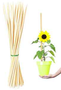 LOVDDYUN 18 inch 25 Pack Bamboo Plant Supports,Wooden Garden Stakes for Tomato Orchid Amaryllis Potted Plants Growing