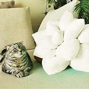 Succulent Pillow, Cute Throw Pillows, Cactus Pillow, Plant Pillow, Plant Shaped Pillow, Leaf Shaped Pillow, Flower Shaped Pillow, Succulent Plush, Cactus Plush, Home Décor