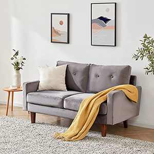 """SETORE 54.3"""" Modern Love Seats Furniture, Mid Century Sofa Couch for Living Room, Bedroom, Apartment/Easy, Tool-Free Assembly-Light Gray"""
