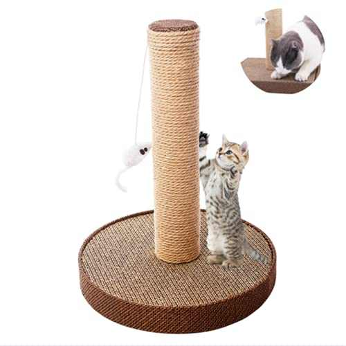 LittleBean Small Cat Scratching Post 2in1 Cat Claw Scratcher and Cat Scratching Board Kitty Scratching Post with Hanging Toys Cat Furniture with Natural Sisal Rope for Indoor Cats Samll Cats