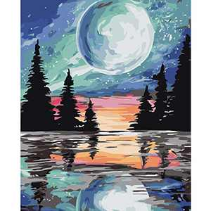 Paint by Numbers for Adults,Oil Painting for Adults Beginner,Adults' Paint-by-Number Kits,Without Frame DIY Colorful Moonlight Acrylic Painting ,Home Wall Decor16x20 Inch Canvas