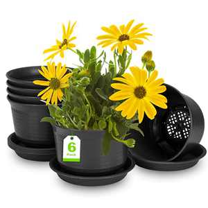 Plant Pots, Rifny Plastic Plant Flower Pots with Multiple Drainage Holes and Tray for Indoor Outdoor Garden Plant, 6 inch Planter Pots Suitable for All Flowers and Succulents (6 pcs, Deep Gray)