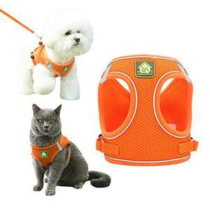 Pet Vipheo Small Dog Harness and Leash Set,Escape Proof Safe Vest Harness for Walking Outdoor,TIK Tok No Pull Reflective Adjustable Soft Mesh Breathable,Easy Control for Cats Puppy(Orange,XL)