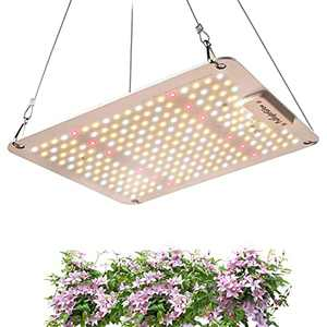 FullightGrow 100W LED Grow Canopy Light, Replace 1000W HPS/HID Bulb, High PPFD, IR, and Red Light Sunlike Full Spectrum, 2x2ft for Indoor Plants Hydroponic Greenhouse Seedling Veg and Bloom