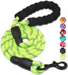 5 FT Strong Dog Leash with Comfortable Padded Handle and Highly Reflective Threads for Small Medium and Large Dogs (Green)
