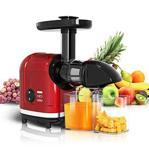 MOLTRES Slow Masticating Juicer High Yield, Cold Press Juicer Machine with Quiet Motor, Juicer Extractor with Reverse Function for Vegetables and Fruits Supplies a Brush Easy to Clean