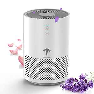 THE THREE MUSKETEERS III M HEPA Air Purifier for Home Bedroom Office and Desk Up to 150 ft², High Efficiency Portable Air Cleaner with HEPA Filter