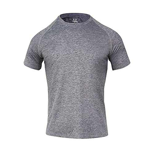 Men Running Workout Athletic T-Shirts - Short Sleeve Dry Fit Performance Male T Shirts (Grey, Small)