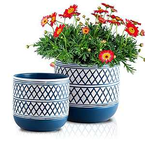 HERDUK Flower Pots , Plant Pots Indoor, Small Pots for Plants, 6 + 4.7 inch Ceramic Flower Pot with Drainage Hole, Suitable for Plants Like Succulents, Aloe, Cactus, Snake Plants, Pack of 2