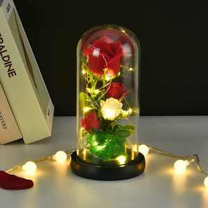 Sunm Boutique Beauty and the Beast Rose Kit, Red Roses and moss with LED Light in Glass Dome for Mother's Day, Birthday, Wedding, Valentine's Day