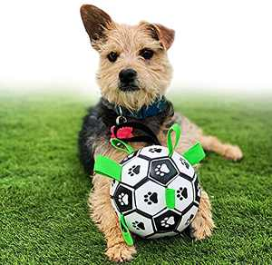 Dog Toys Herding Ball Interactive Soccer Fetch Balls Premium Durable Dog Ball for IQ Training, Tug of War, Water Play and Retrieve Exercise, Easy Grab for Small and Medium Dogs