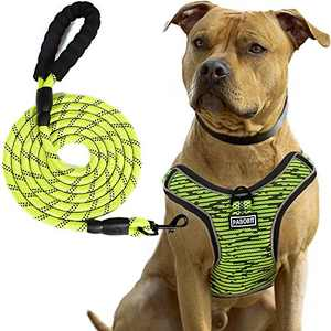 PABOBIT Dog Harness, No Pull Dog Harness and Leash Set, Reflective Adjustable Pet Vest with 5ft Dog Leash, Soft Breathable Flying Net Dog Harnessfor Large Medium Small Dogs (Green, L)