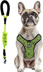 PABOBIT Dog Harness, No Pull Dog Harness and Leash Set, Reflective Adjustable Pet Vest with 5ft Dog Leash, Soft Breathable Flying Net Dog Harnessfor Large Medium Small Dogs (Green, M)