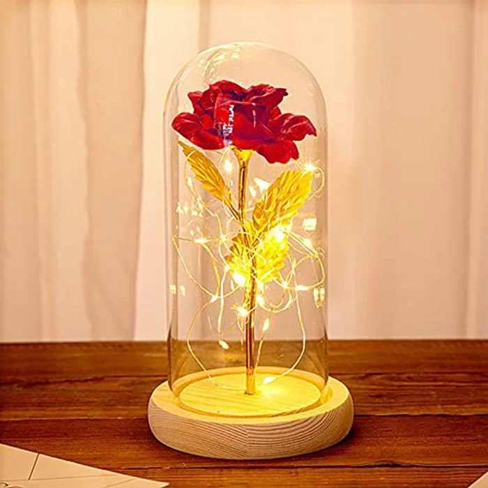Beauty and the Beast Rose Lamp Red Roses,Valentines Rose Petals LED Lights ,Rose in a Glass Dome Office or Home Decorations