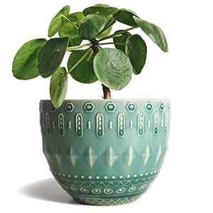 Gepege 5.5 Inch Ceramic Planter Pot with Drainage Hole for Plants, Indoor-Outdoor Large Round Succulent Orchid Pot, Ice Cracked Glaze Flower Pot