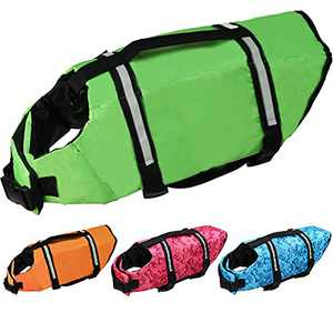 Cielo Meraviglioso Dog Life Jacket, Dog Swimsuit Safety Flotation Vests Pet Life Preserver Savers with Lift Handle Reflective Stripes for Small Medium Large Dogs Swimming Boating (Green, Small)