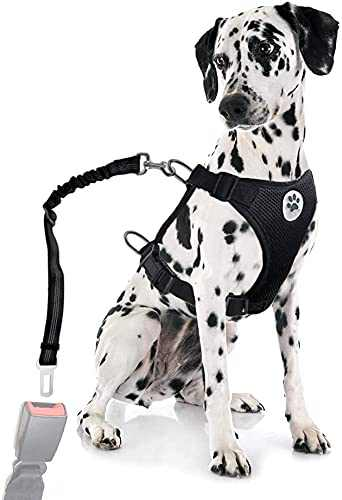 Dog Seatbelt Dog Car Harness with Pet Harness Double Breathable Mesh Fabric Vest,Adjustable Pet Seatbelt,Car Vehicle Connector Strap for Dogs and Seatbelt Extenders for Cars(Black(Classic),XXS)