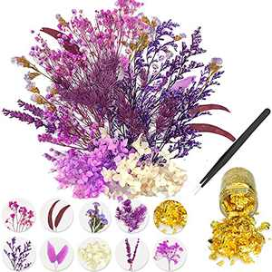 Real Dried Flowers Set, Natural Dry Flowers for Resin, Multiple Colors Pressed Flowers for Scrapbooking Resin Jewelry Craft DIY Candle Decoration Craft Flowers, Resin Gold Foil and Tweezers(Purple)