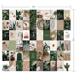 Wall Collage Kit 60Pcs Set – Minimalist Boho VSCO Premium Plants Pictures, Girls bedroom Wall Art decoration– 4 x 6 Inch Teen Room Decor for Girls, College Dorm Room Poster decor (Boho Plants)