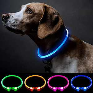 Lighted Dog Collars Rechargeable Dog Working Light Safety Personalized Dog Collar with USB Rechargeable Super Bright Dog Flashing Collar 5 Colors Dog Lights for Night Walking