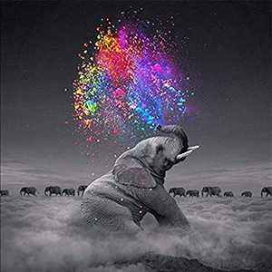 Creative Animal Diamond Painting Kits for Adults, 5D Crystal Diamonds Art with Accessories Tools, Elephant Picture DIY Art Dotz Craft for Home Décor, Ideal Gift or Self Painting