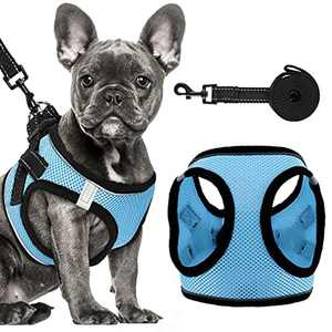 Dog Harness Set, No-Pull Reflective Step in Dog Vest Harness, Easy Control Handle, No-Choke Soft Mesh Pet Vest for Small Medium Dogs (Blue, Harness+Leash)