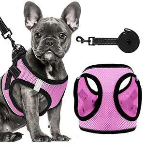 Dog Harness Set, No-Pull Reflective Step in Dog Vest Harness, Easy Control Handle, No-Choke Soft Mesh Pet Vest for Small Medium Dogs (Pink, Harness+Leash)