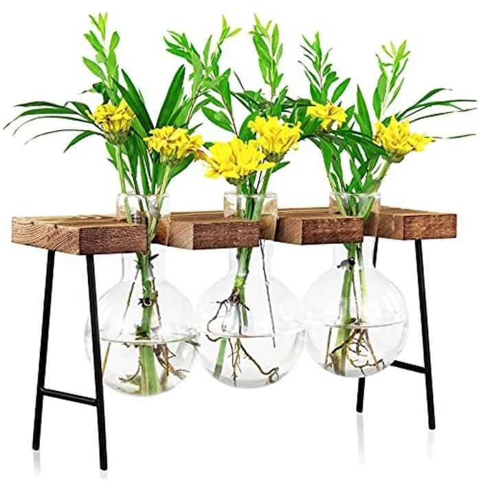 LESES Plant Propagation Station, Plant Terrarium Glass Vase, Desktop Glass Planter with Wooden Stand Propagation Stations for Hydroponics Plants Office Home Decor - 3 Bulb Flower Vase