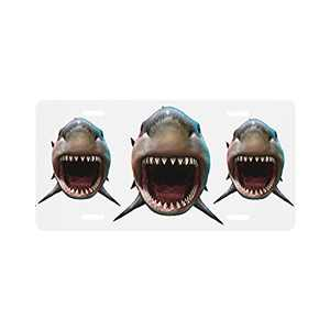 Shark Biting License Plate Frame for Women Man Cover Front of Car Vanity Tag Aluminum Novelty Home Decoration 6 X 12 Inch