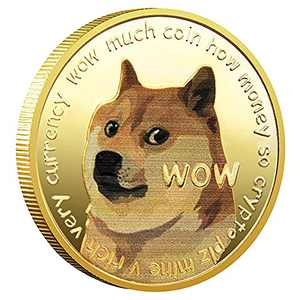 Dogecoin Coin, Gold Plated Real Doge Coin 2021 Limited Edition Collectible, Commemorative Physical with Protective Case