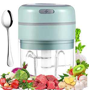 Electric Mini Garlic Chopper 250ml,Grarry Mini Chopper Food Processor, Garlic Mincer, for Chop Onion Ginger Vegetable Pepper Spice Meat, Baby Food, Easy Cleaning, BPA Free