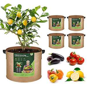 T4U Fabric Plant Grow Bags 10 Gallon Pack of 5, Heavy Duty Cloth Smart Garden Pot with Handles, Thickened Aeration Nonwoven Planter Container for Outdoor Potato, Tomato, Chili, Carrot and Vegetables