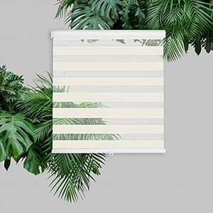 AOSKY Zebra Roller Shades Blinds for Window Waterproof Outdoor Cordless Blinds Control Easy Install for Living Room, Bed Room, Office(W40 X H72, Beige