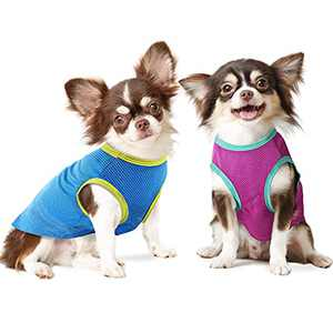 IREENUO 2 Pack Dog Shirt, Cooling Small Dog Cat Clothes Quick Dry Pet T-Shirts Puppy Apparel Breathable Soft Puppy Shirt with Stretchy