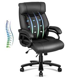 Ergonomic Office Chair, High Back Office Chairs Adjustable Ergonomic Desk Chair with Lumbar Support, Home Office Desk Chairs (Black)