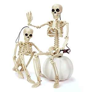 """Eunvabir 2PCS Skeleton Halloween Decorations, 16"""" Full Body Posable Skeleton with Movable Joints for Halloween Party Haunted House Halloween Desk Decor, Holiday Scary Toys Prizes Gifts for Kids"""