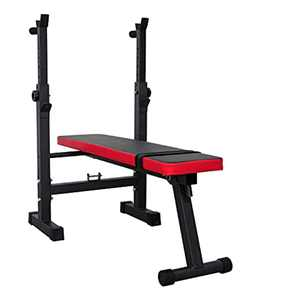 HOFLERA Weight Bench Foldable with Rack All-in-one Home Gym Bench Press & Dip Station Folding Heavy Duty Weight Lifting Bench Multiuse Workout Bench Weights Bench & Bar for Home