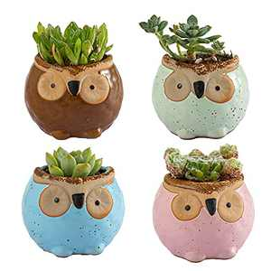Small Flower Pots with Drainage, 2 Inch Mini Owl Planter, Cute Succulent Pots for Indoor, Home and Office Decor, Window Sill Room Decoration, A Set of 4 Pieces is Suitable as A Gift