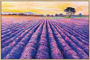 Mignombre Framed Canvas Wall Art for Living Room Bedroom - Oil Painting Art Reproduction Wall Decor of Provence Lavender - HD Color Prints Paintings Artwork for Modern/Rustic Home Office Decorations Ready to Hanging (16'' x 24'' , K015)