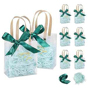 AYOTEE Small Gift Bags Bulk, Frosted Plastic Clear Gift Bags with Handles Small Reusable Gift Bags for Wedding, Birthday, Valentines, with Green Paper Filler and Ribbon 8 Pack - 5.3x2.7x5.9 inches