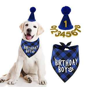 Dog Birthday Party Supplies, Boy Dog Birthday Bandana Scarf and Dog Birthday Hat with Number.