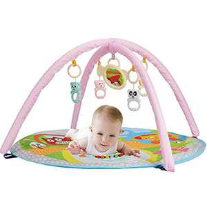 Miciao Baby Activity Gym, Infant Play Mat Stage-Based Developmental Baby Gym and Playmats for Newborn
