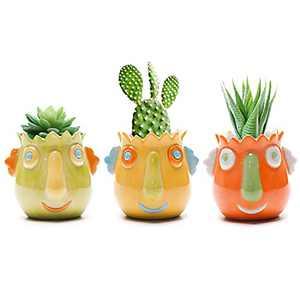 Succulent Plant Pot Creative face Shaped 3IN Small Ceramic Cactus pots Flower Pots Mini Plant Planters for Desktop Usage Home Decoration