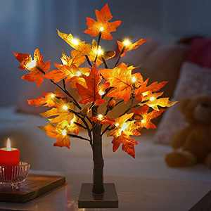 21 Inch Fall Decor Maple Tree Light with 24 LED Thanksgiving Artificial Tabletop Lighted Maple Tree 6 Acorn for Indoor Home Halloween Christmas Autumn Decorations (Warm White)