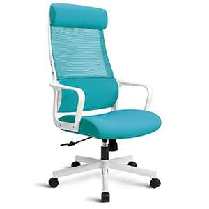 MELOKEA Ergonomic Office Chair, Swivel Mesh Office Chair High Back Desk Chair with Elastic S-shaped Lumbar Support, Adjustable Height and Headrest, Executive Computer Chair for Home and Work Black