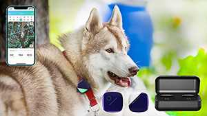 PETFON GPS Dog Tracker, Live Tracking,All-Day Activity Monitoring, APP Control for Dogs
