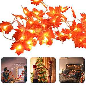 DEEMEI 19.6Ft/40 Led Thanksgiving Decorations Lighted Fall Garland, Fall Artificial Maple Leaves Garland String Light, Battery Outdoor Autumn Lights Thanksgiving Gift